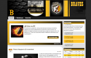 Setting up a professional website for the Bantam Team